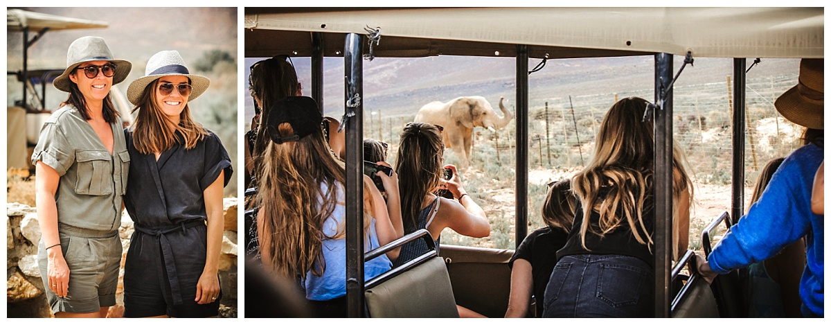 International Group in Cape Town - Destination Management Company - Aquila Game Reserve Safari